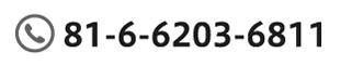 81-6-6231-3771